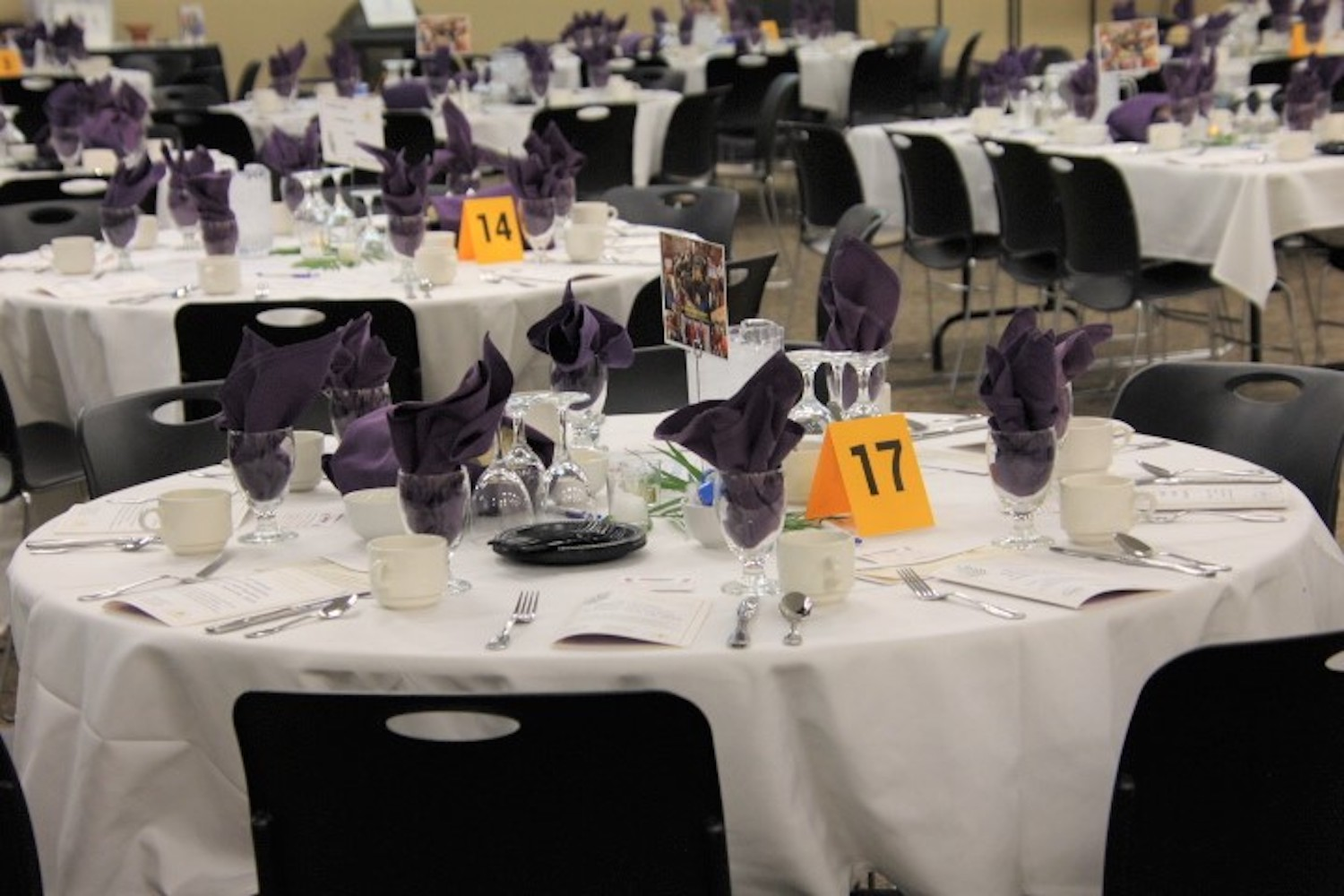 Annual Foundation Dinner and Auction